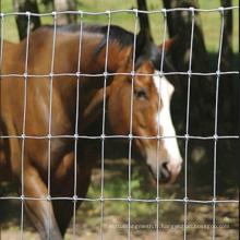 Clôture de prairie galvanisée à cheval avec bas prix