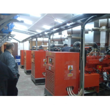 Natural Gas Generator Set for Russia Kazakhstan Market Ce ISO 20kw-2000kw