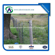 USA Type and Europe Type Farm Fence Studded T Post