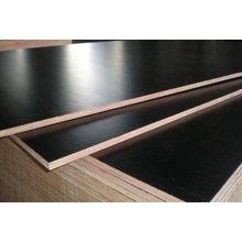 Black Film Faced Plywood o Marine Wood