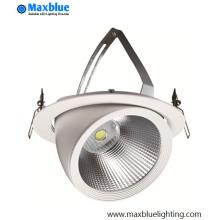 20W 30W 40W 50W Rotatable CREE LED Trunk Down Light