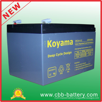 12V14ah Deep Cycle AGM Battery for Utility Vehicle