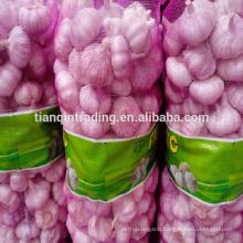 4cm 5cm 5.5cm 6cm China normal white pure white garlic 20kg/mess bag