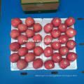 Вкусные Свежие Яблоки Фуджи