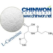Skin Brightening Ingredients L Carnosine