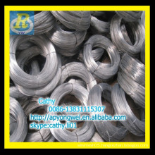 galvanized iron wire bwg21/1.6mm galvanized iron wire