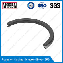 Large Dimension Rubber Va Type Shaft Use V-Ring Water Seals