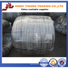 Bwg 12 14 16 18 heiß getaucht / elektrische verzinktem Eisendraht Made in China (echte Fabrik)