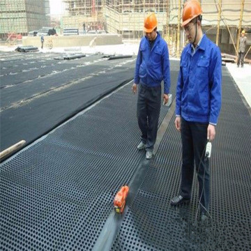 HDPE Dimple Green Roof Drainage Board