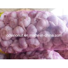 Китайский чеснок (Индонезийский рынок)