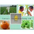 Manufacturer Pest Control, Insecticide, Veterinary Drug 95% Tc Nitenpyram