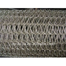 Spiral and Wire link Conveyor Belt (factory)