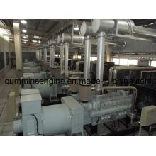 8-Pole High Voltage Low Speed Alternator (5603-8 800kw)