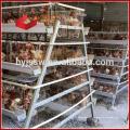 Système de cage de batterie de volaille - BAIYI