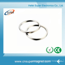 Hottest Sale Permanent Rare Earth Ring Magnet
