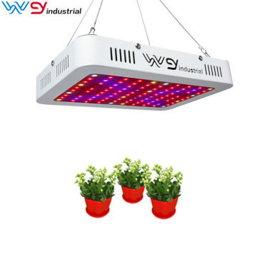 Greenhouse Plant Veg & Flower 600w LED Grow Light