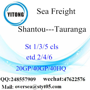 Shantou Port Sea Freight Shipping To Tauranga