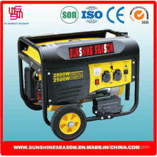 2.5kw Generating Set for Outdoor Supply with CE (SP3000E2)