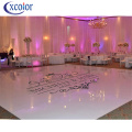 Schermo LED per Dance Floor per discoteca / pub / club / party