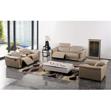 Living Room Sofa with Modern Genuine Leather Sofa Set (422)