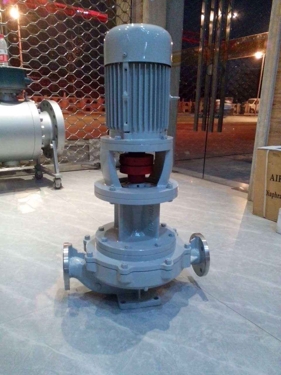 Vertical hot oil pump