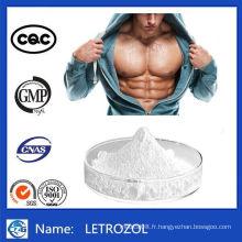 99% Pureté Steroides Hormone Poudre Letrozol 112809-51-5