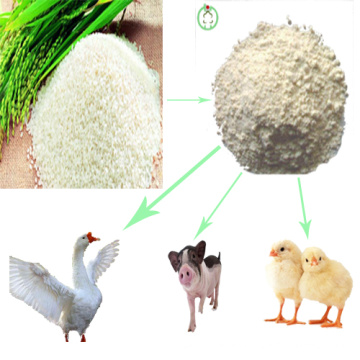 Feed Grade Rice Protein Meal Alimentación Animal Rice Protein Powder