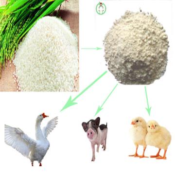Nourriture de riz de protéine de riz de repas de gluten de riz