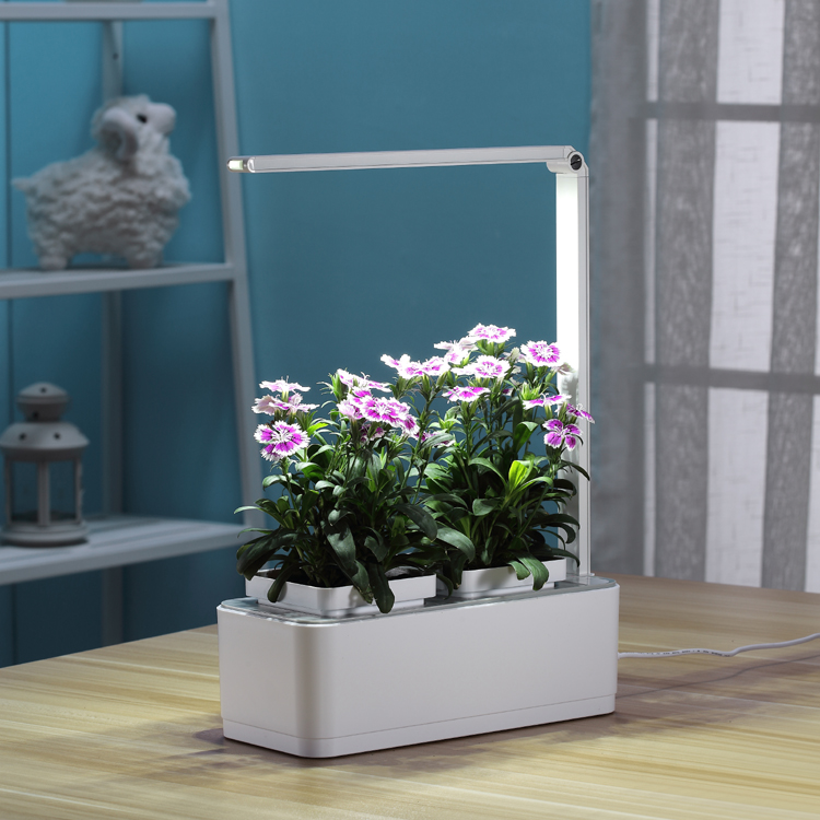 Smart Indoor Mini Garden