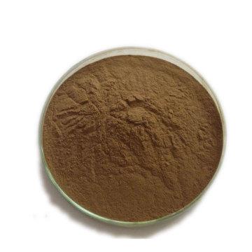organic echinacea extract powder