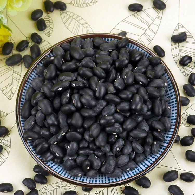 New Crop Natural Grown Black Beans Pulses