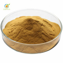 Medicine Plant Extract Natural Leek Seed Extract Powder
