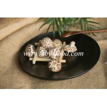 Tasty Vegetable Dried Tea Flower Mushroom