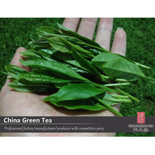 the vert de chine green tea, chinese green tea, chinese green tea supplier