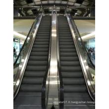 Escalator Escalator Prix Fabrication