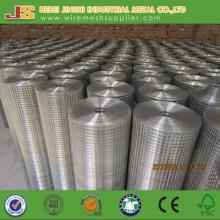 1/2 Inch Galvanized Welded Mesh Made in China