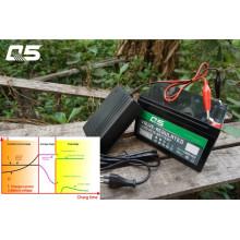 6V2A Automatic Trickle Lead acid battery Carregador Armazenamento Carregador de bateria