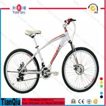 Fábrica Barato Por Atacado Popular Mountain Bike