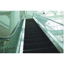 30 or 35 Degree Escalator Cost