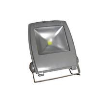 ES-10W LED Floodlight