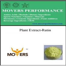 Extrait de plante Rutine de qualité NF