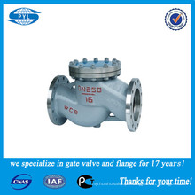 WCB ou válvula de verificação do balanço do aço inoxidável usada no fornecedor da porcelana do ácido nítrico