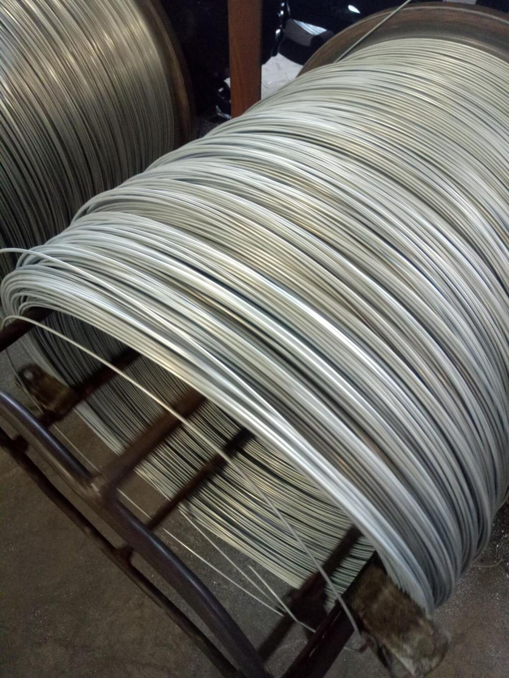 Galvanized Wire for Building
