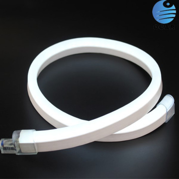 NEON led strip light IP68 étanche