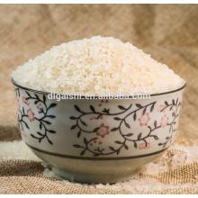 vente en gros Rice