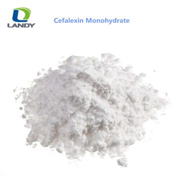 China Polvo confiable del monohidrato de Cefalexin del buen precio de la calidad