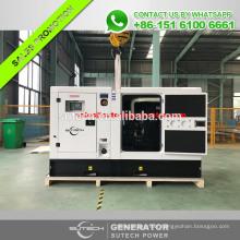 60HZ 65kva generator with silent canopy 50KW Yangdong noiseproof generator price