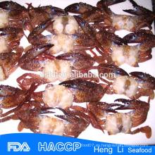 HL003 Cangrejos ricos de la nutrición al por mayor