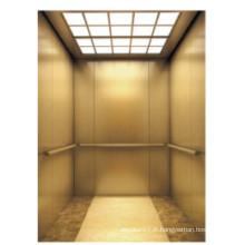 Fjzy-ascenseur (FJ8000-1) ascenseur passager Fjzy-196