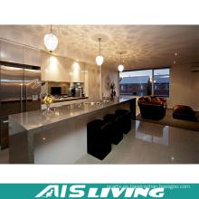 Gabinetes de cocina profesionales Exportador de muebles Fabricante (AIS-K196)
